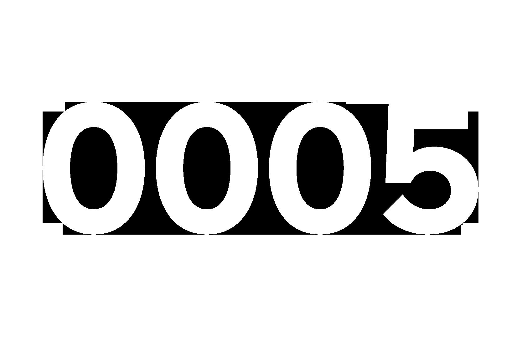 Numeri-55
